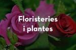 Flors l'Heura