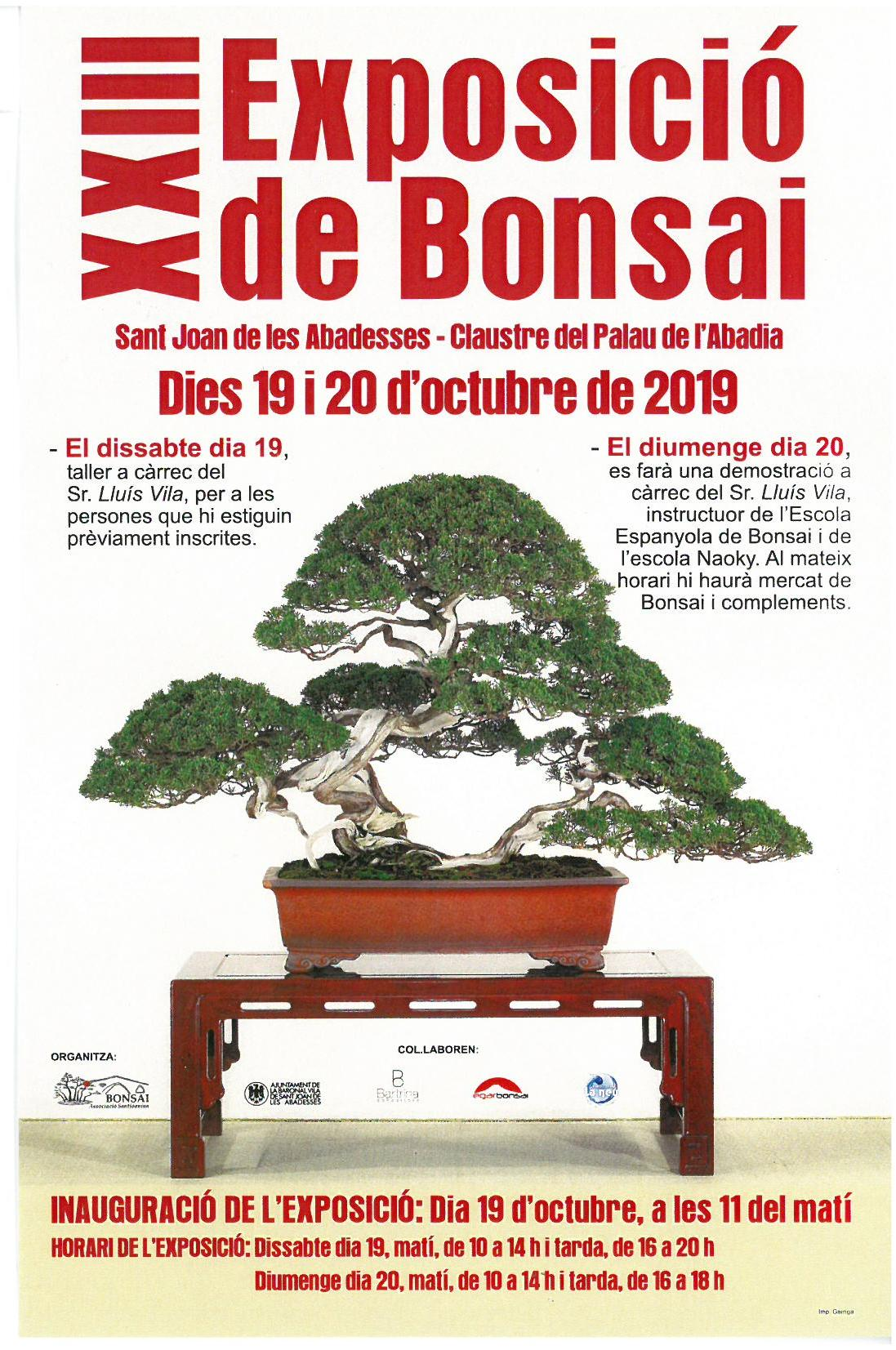 Cartell Bonsais Oct agenda