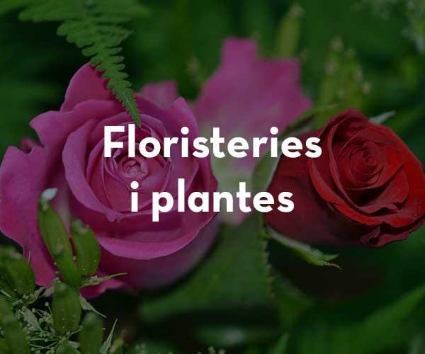 Floristeries / Plantes